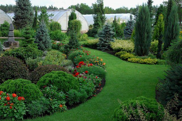 Декоративные травы в садах